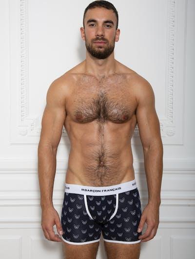 Long french bulldog boxer